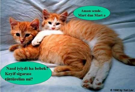 Aman sende marttan marta :)))